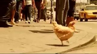 Safe Kids (Chicken) PSA featuring Jennette Mccurdy (2009)
