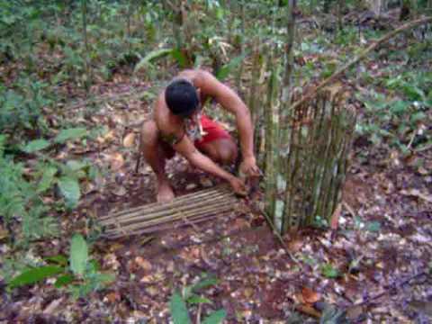 Amazônia Armadilha indígena 1