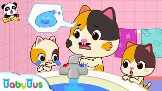 Baby Kitten Got Scalded | Baby Kitten