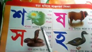 Let's Learn the bangla Banjon borna - preschool learning