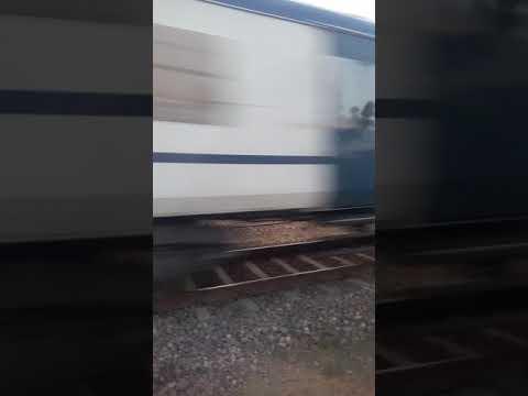 Xxx Mp4 New Tren Trayal Bhavpura Lakheri 3gp Sex