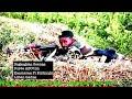 Download Video Download HAWWISOO WBO SONG DAWADHAA 2018❤W.B.O💚A.B.O ❤ 3GP MP4 FLV