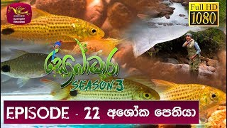 Sobadhara - Sri Lanka Wildlife Documentary | 2019-08-16 | Ashoka Pethiya (අශෝක පෙතියා)