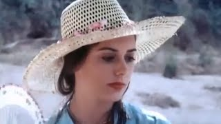 Taste love Movie ►Noites do Sertão 1983 +18   Dreaming 2016