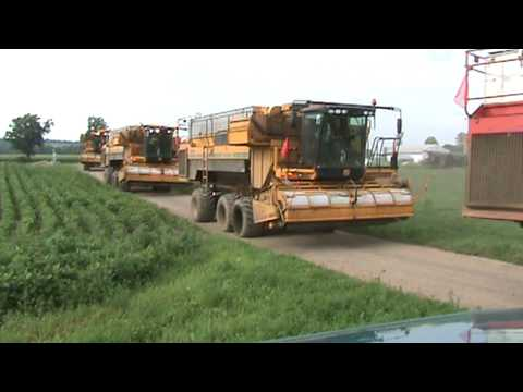pea combines moving out
