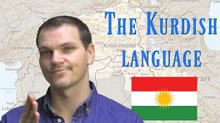 The Kurdish Language