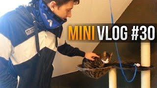 Vlog-Woche #30: Paape hat Katzen