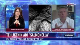 HT Gündem - 21 Haziran 2017 (Salmonella  Virüsü)