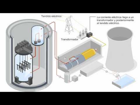 ¿Cómo funciona una central nuclear