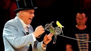 Norman Barrett MBE And His Amazing Budgies: Zippos Circus