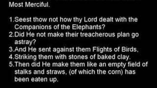 Quran: Surah Al - Fel