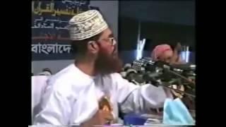 রাজাকার চ্যালেঞ্জ - আল্লামা দেলোয়ার হোসাইন সাঈদি