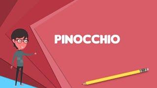 What is Pinocchio (1957 TV program)?, Explain Pinocchio (1957 TV program)