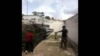 Árvore cai em cima de homem