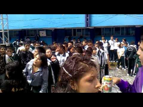 PERREO intenszoo en la 303 Fiesta de espuma