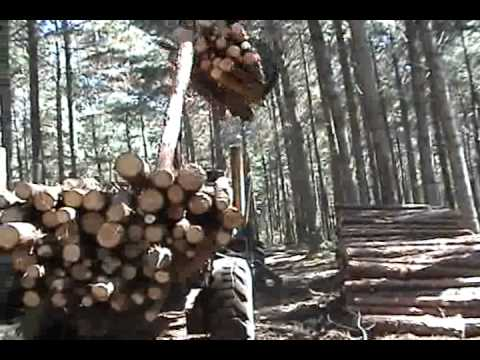 Carregador Florestal TMO C760 com carreta ETS1050