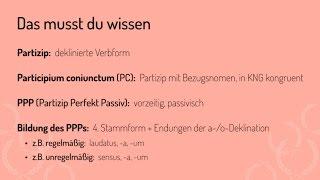 Wie du ein PC mit PPP erkennst und übersetzt (Vorschau)