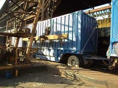 Descarregando cana picada 3E Transportes
