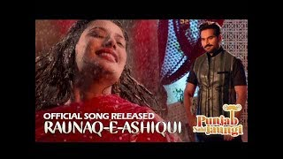 Raunaq-e-Ashiqui   Punjab Nahi Jaungi   ARY Films