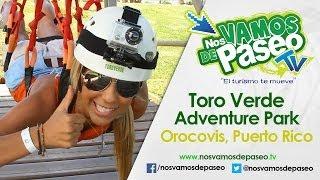 Toro Verde, Orocovis P.R.