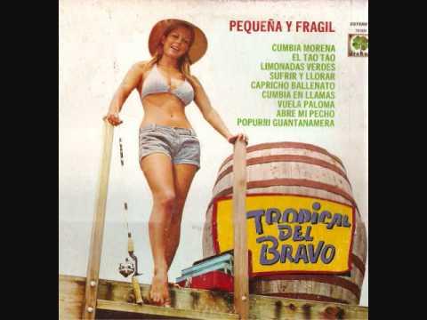TROPICAL DEL BRAVO PEQUENA Y FRAGIL LP COMPLETO