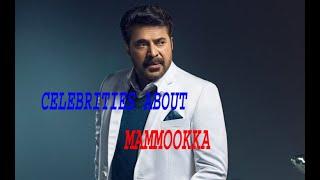 Celebrities about Mammootty    actors talk about mammootty megastar mammookka