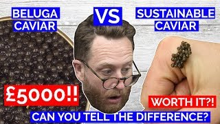 CAVIAR £5000 WORLDS MOST EXPENSIVE Vs UK sustainable Caviar