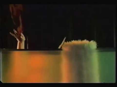 Xxx Mp4 Los Mirlos Sonido Amazûnico A Sexy Video Mp4 3gp Sex