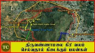 திருவண்ணாமலை கிரி வலம் செல்வதால் கிடைக்கும் பலன்கள் | Thiruvannamalai girivalam benefits in Tamil