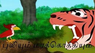புலியும் மரக்கொத்தியும்   Tiger & Woodpecker ( Tamil Stories )   Animal Stories for Kids