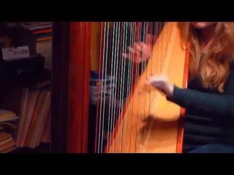 Xxx Mp4 Cruella De Vil 101 Dalmatians Harp Cover 3gp Sex