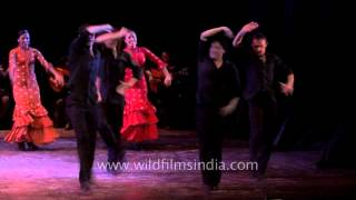 Awesome flamenco performance by Spanish dancers in India