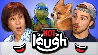 Try to Watch Without Laughing or Grinning #31 (REACT)