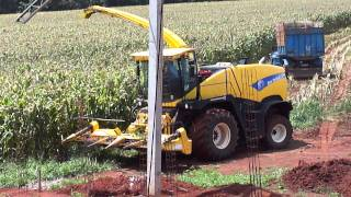 colhedeira de milho na fazenda do tarcisio meira.