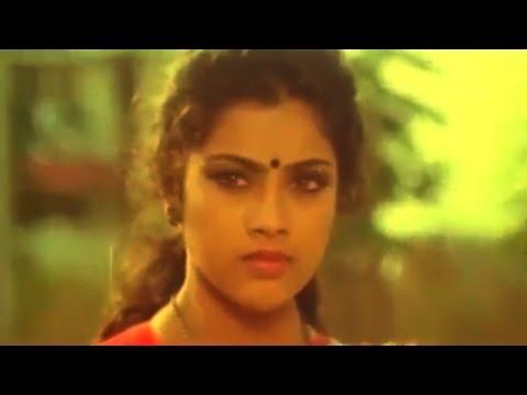 Punya Bhoomi Naa Desam Movie || Villain Meena Saree Remove Scene || Mohan , Meena