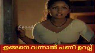 വന്നു കണ്ടാല് പണി ഉറപ്പ് ..Serial Actress role in SreeKrishnaparunth Movie.