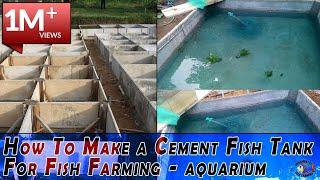 How To Make a Cement Fish Tank For Fish Farming - aquarium fish tank setup- diy