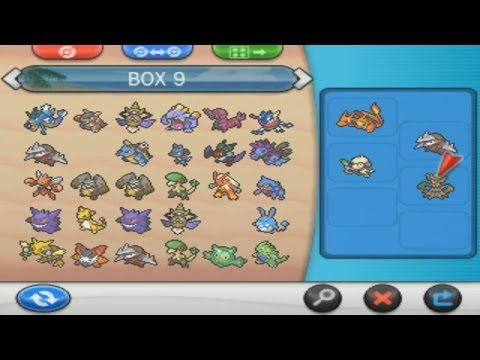 Pokemon X and Y Basic Team Building Guide