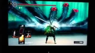 Dark Souls-How to Kill Ash Lake Hydra