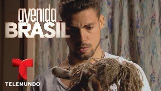 Avenida Brasil | Mejor Escena día 17 | Telemundo Novelas