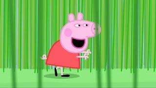 Peppa Pig Français | 3 Épisodes | Betsy la Tondeuse | Dessin Animé Pour Enfant #PeppaPigEnFrancais