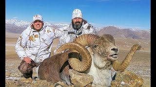 Hunting for Marco Polo sheep and Pamir Ibex Tajikistan