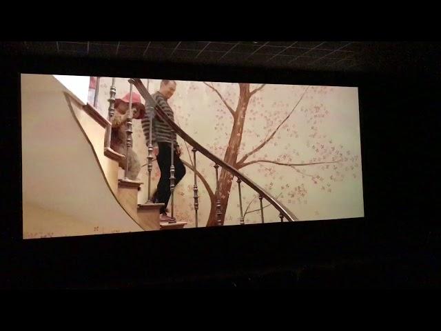 Paddington 2 cinema