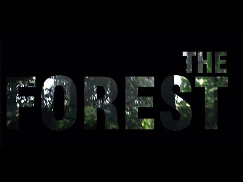 The Forest : Moje eQ