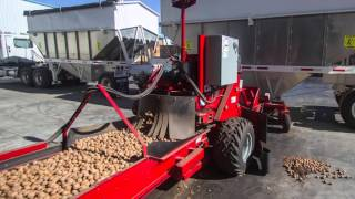 Harvesting and storing walnuts in Corning, CA USA