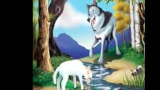 Јарето и волкот