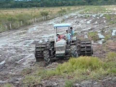 Lavoura de arroz em Flores de Goiás