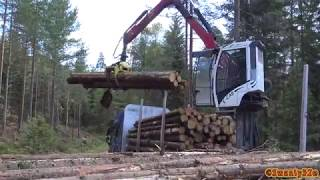 4K| Volvo FH16 750 Timber Truck Loading