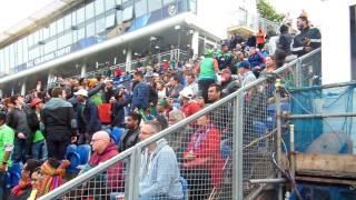 Bangladesh Vs New Zealand, Cardiff Sophia Gardens, 09/06/2017