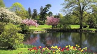 سه نوازی  تار  ویولن  تمبک: در دستگاه شور           Trio in Shour: Tar،  Violin، Tombak